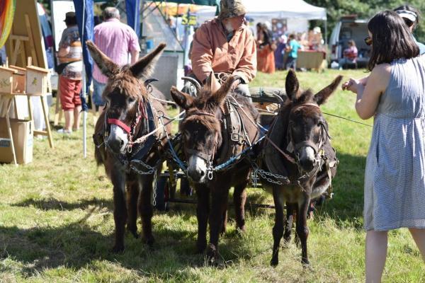 Attelage trois ânes