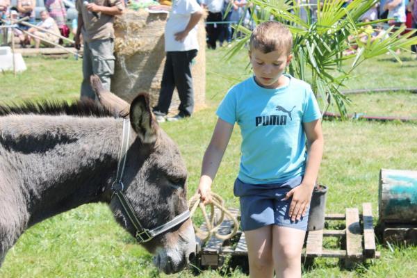 Nolan et Pepone, son âne de Provence