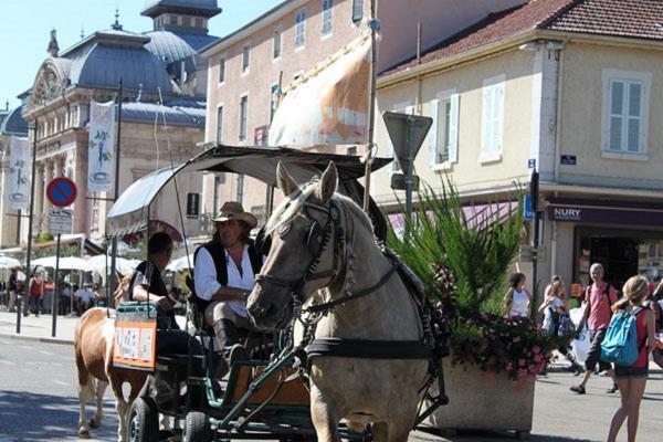 Mascotte à la cavalcade  2015 d'EQUID'AIN à BOURG EN BRESSE